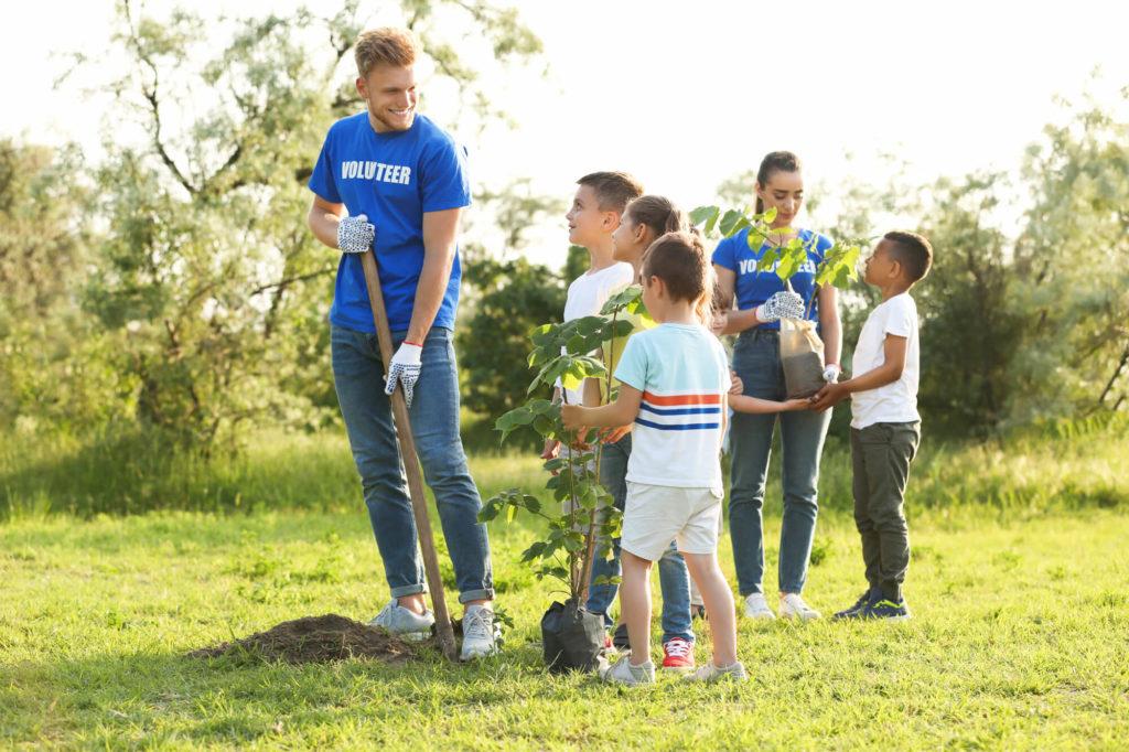 Plantar árboles, plantar esperanza: Todas las razones por las que debe plantar un árbol hoy en día 2