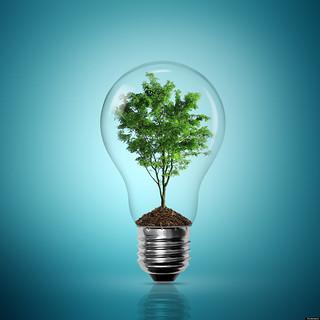10 Compañías que se aprovechan de la energía renovable
