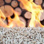 ¿Bueno o Malo? Una guía esencial sobre los pros y los contras de la biomasa