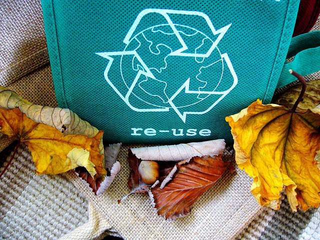 Recyclable Or Reusable Materials