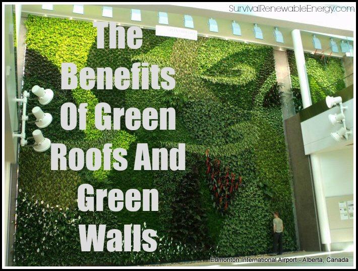 Los beneficios de los techos y paredes verdes