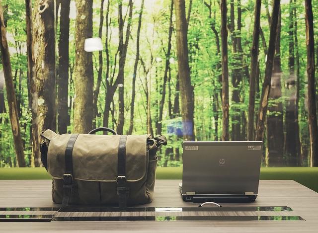 4 Consejos para una oficina ecológica: Cómo tener la oficina más ecológica