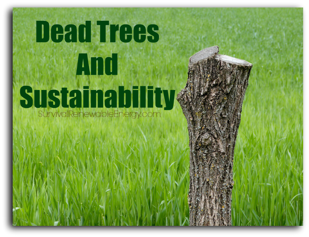 Dead Trees And Sustainability