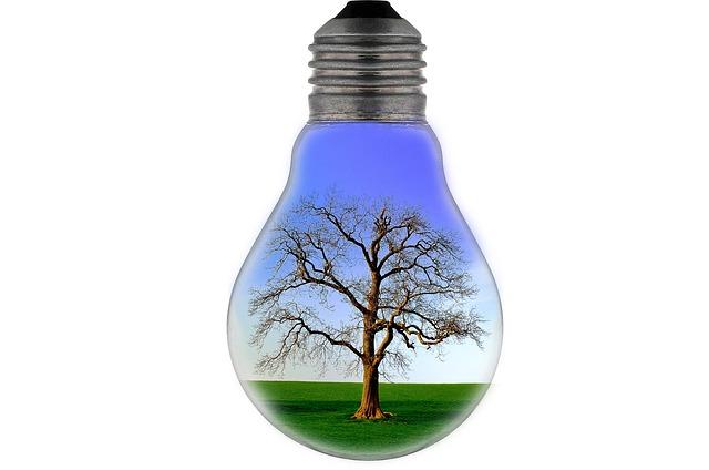 La Resolución de Año Nuevo que Todo Negocio Debe Hacer: Ser Ecológico para Combatir el Cambio Climático