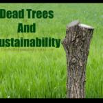 Árboles muertos y la sostenibilidad