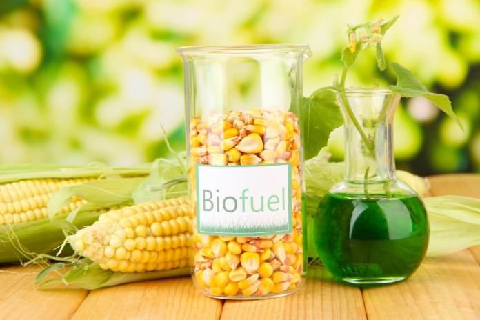 ¿Qué son los biocombustibles y por qué debería usarlos en mi coche?